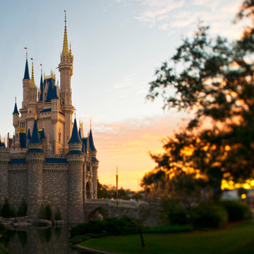 magic-kingdom-gallery00