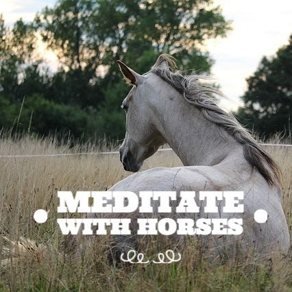 Self-Care for the Caregiver: Retreat Day with Horses to Restore your Soul image